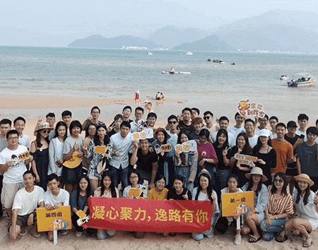 河北网站建设公司团队风采